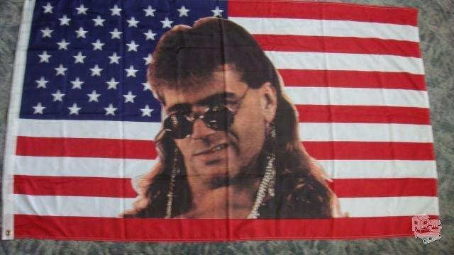 Šilkinė vėliava