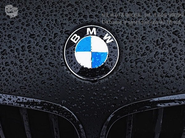 BMW F25 dalimis