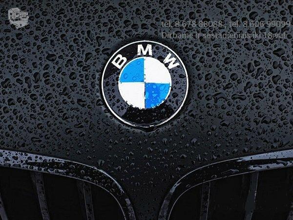 BMW X6 E71 dalimis