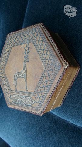 Odinė dėžutė